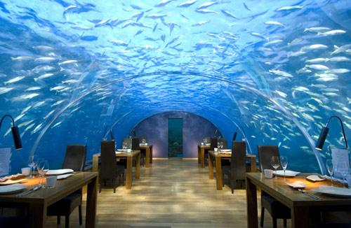 hotel-conrad-maldives-under-water-restaurant-hoosta-magazine-paris-blog