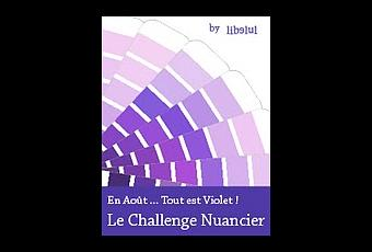 """Résultat de recherche d'images pour """"nuancier violet"""""""