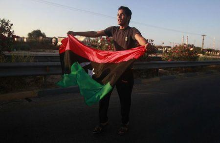 drapeau-libien-2-37a40