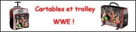 Dolph Ziggler succombe face à Randy Orton