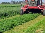 agriculteurs auraient moins cancer
