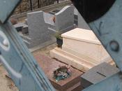 chat cimetière Montmartre confort avant tout!