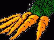 Dans panier ménagère rock botte carottes (recette 1)...