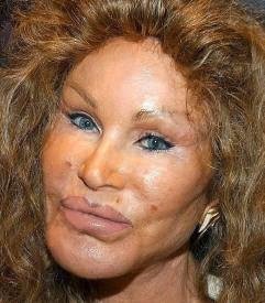 http://www.erichufschmid.net/Dumb-down/Jocelyn-Wildenstein.JPG