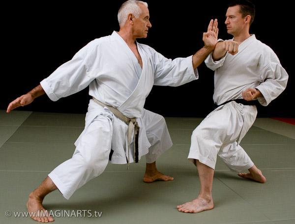 sensei lavorato karate shotokan