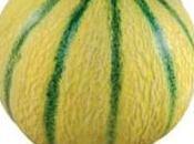 onze-type melons