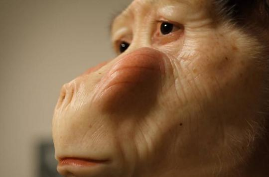 © Patricia Piccinini 2011 - Monsters