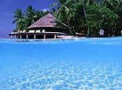 Maldives seront carbone neutre 2020