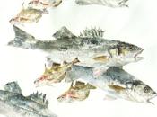 L'empreinte poisson. L'art japonais Gyotaku