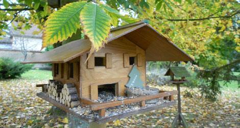 j invite les oiseaux voir. Black Bedroom Furniture Sets. Home Design Ideas