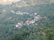 week-end dans vignes vallée Douro Portugal