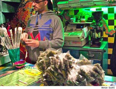 cannabis cup amsterdam
