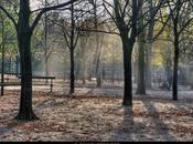 HDR. Balade automnale, jardin Luxembourg, Bois Vincennes, Paris.