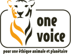 Page facebook de One voice