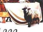 VDV#41: vins mariage d'enterrement