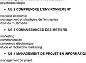 Formation webmarketing licence, master, mastères spécialisées
