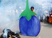 """[Multimafieusesnales Biodiversité] Monsanto poursuivi pour """"biopiraterie"""" l'Inde"""