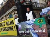 Brésil nouveau code forestier pourrait condamner l'Amazonie