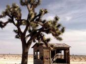 L'désert