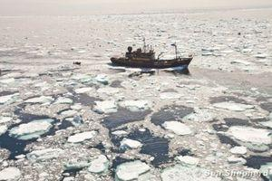 110101_BV_Steve_Irwin_And_Delta_During_Engagement_With_The_Fleet_Antarctica_8031_90_550_310_80