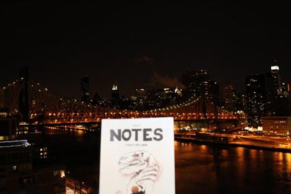 Notes sur Roosevelt Island