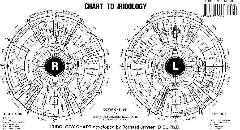 Diagnostic avec Iridology