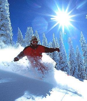 Série Sport & DD, épisode 6: Un ski vert pour notre planète bleue…