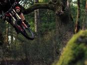 Thomas Doyle balade forêt envoie
