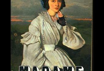 Tone madame bovary essay