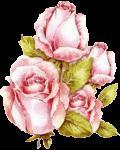 Fleurr