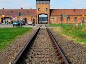 Auschwitz, Djerba malheur