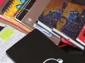 l'intérêt pour un(e) scénariste tenir journal/blog