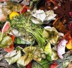 Pour bien trier ses déchets ménagers : le label OK compost