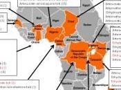 PALUDISME: millions vies menacées contrefaçon anti-paludiques Malaria Journal- Welcome Trust