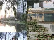 long Liangmahe