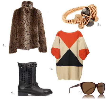 Dream Outfit For January ♥