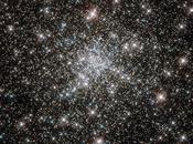 [Image jour] L'amas globulaire 6752 photographié Hubble