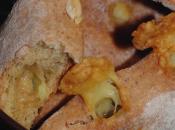 Scones betterave, amandes & gouda cumin