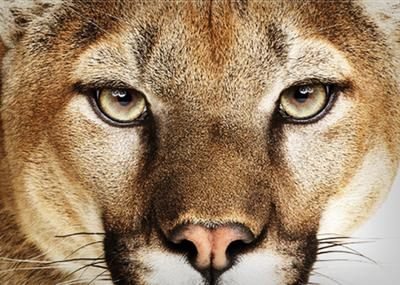 Mountain Lion, le successeur de Lion Mac OS...