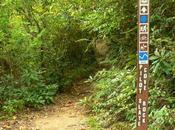 Pilot Cove- Slate Rock Trail
