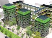 Canopée urbaine énergie zéro