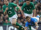 fringants irlandais