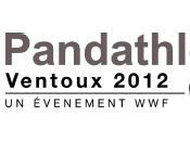 3ème édition Pandathlon organisé