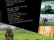 Latitudes Animales 2012