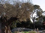 Jardins Prévert