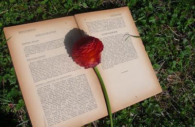 La lectrice qui devint Reine