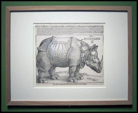 Albrecht Durer • Le Rhinocéros