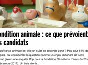 Condition animale paquet candidats dégager sans hésitation