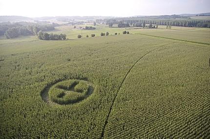 Les OGM, vous êtes pour ou contre ?