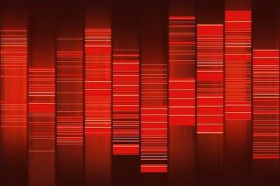 WEB2DNA Convert Website into DNA Art - Convertir Site Web et Blog en ADN